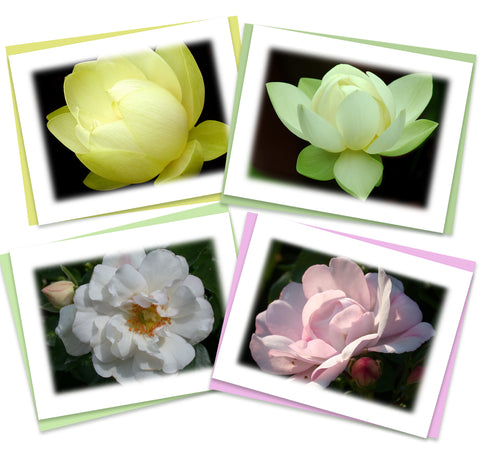 Serenity Greeting Card Assortment | Set of 4