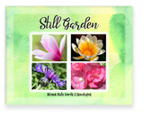 Still Garden, Garden Blooms Greeting Card Assorted, Magnolia, Gazania, Pink Begonia and Stokes Aster Flowers