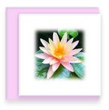 Garden Party Blooms Mini Cards Waterlily, Mini Square Cards
