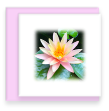 Waterlily Mini Greeting Card with Envelope, Mini Note Card