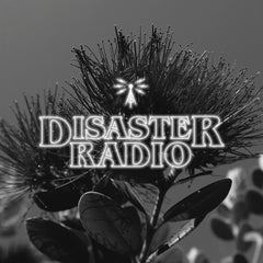 Disaster Radio - November - Kiwi Summer