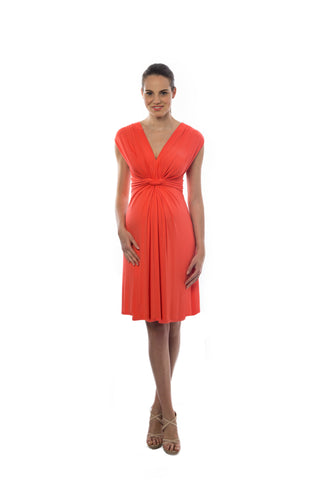 Pietro Brunelli Papaver & Nursing Maternity Dress