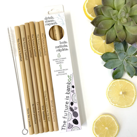 Bamboo Reusable Straws 6 pack + Cleaning brush