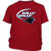 NFL - Dilly Dilly Carolina Panthers Football Shirts-T-shirt-District Youth Shirt-Red-XS-Itees Global