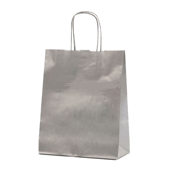 Silver Kraft Paper Party Bag