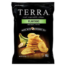 Terra Plantains Chips with Sea Salt, 5 Oz (Pack of 12)