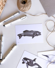 Load image into Gallery viewer, hand drawn black and white coral trout postcard by elk draws