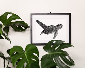 Green sea turtle print hanging on white wall behind monstera