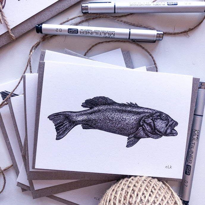 hand drawn black and white coral trout greeting card by elk draws