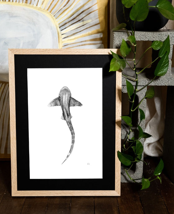 leopard shark to raise money for mental health hand drawn in oak frame indoor plant