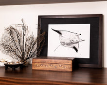Load image into Gallery viewer, Manta ray print with jewellery box and dried coral and shells