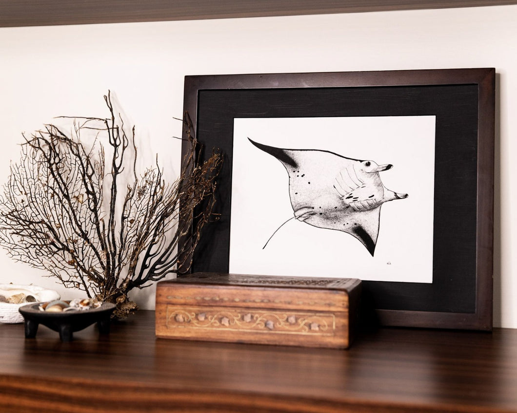 Manta ray print with jewellery box and dried coral and shells