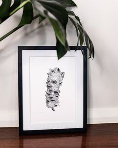 Banksia drawing in modern home underneath monstera