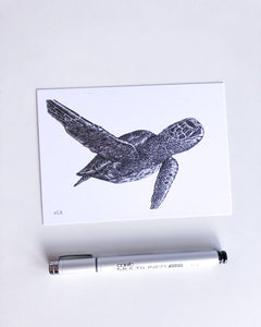 green sea turtle recycled paper postcard