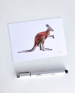 elk draws kangaroo fine art drawing postcard