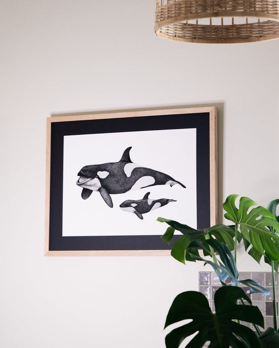 orca and calf drawing with monstera indoor plants