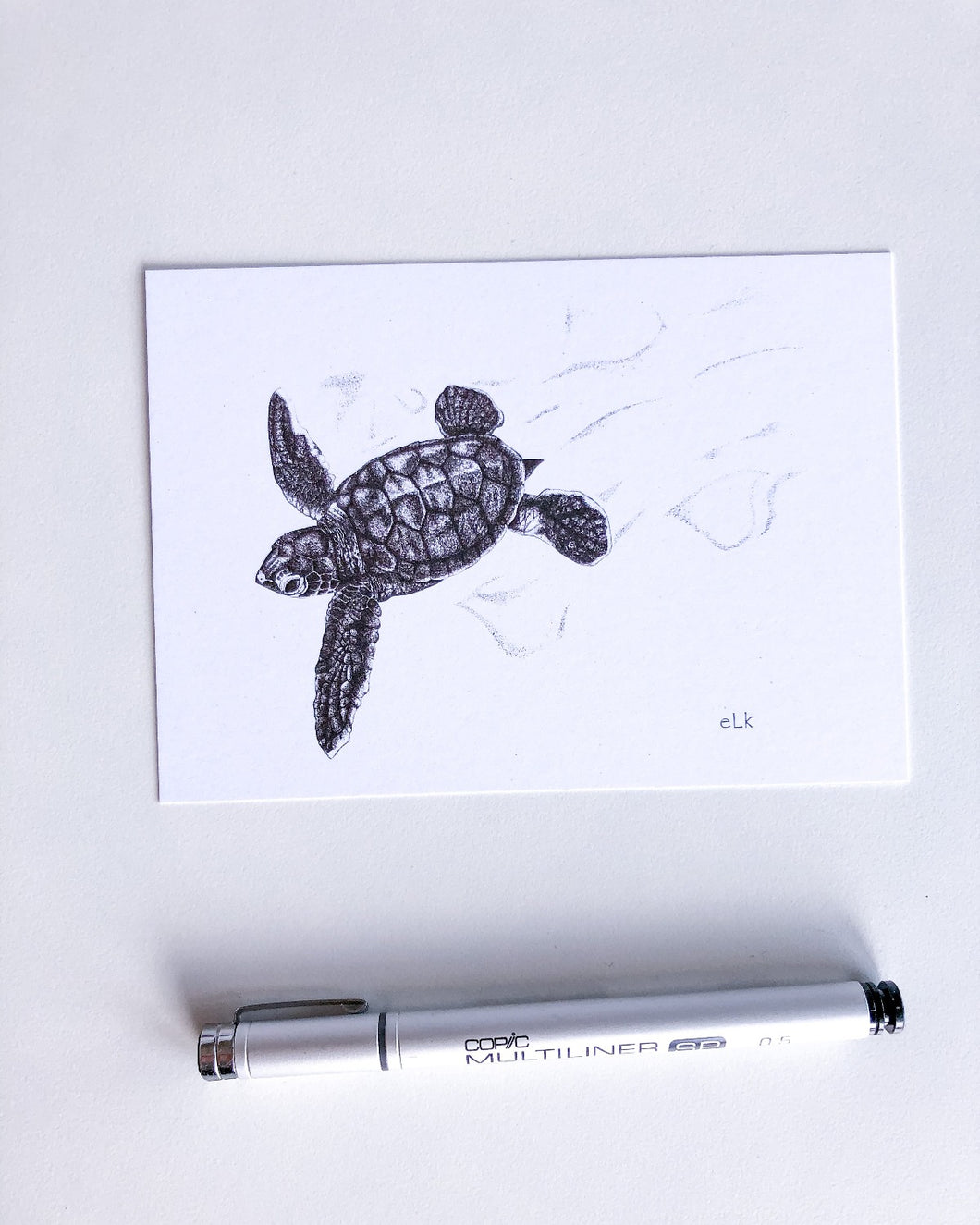 baby turtle postcard recycled paper by elk draws