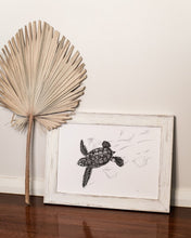 Load image into Gallery viewer, turtle hatchling in washed white wooden frame