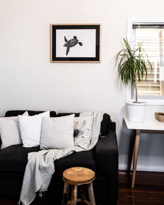 turtle hatchling print above couch in living room