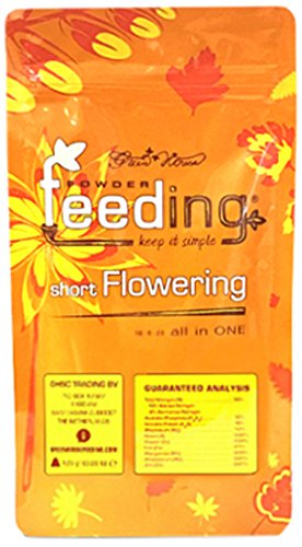 Powder Feeding Short Flower