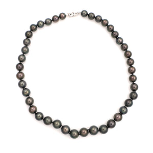 Black Pearl Strand Necklace with Gold Clasp - Sindur