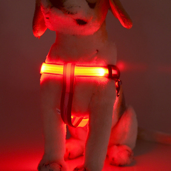 Fashion Dog Harness Safety LED Flashing Leash Rope Belt Collar Rechargeable-Pets-hundredfeel-hundredfeel