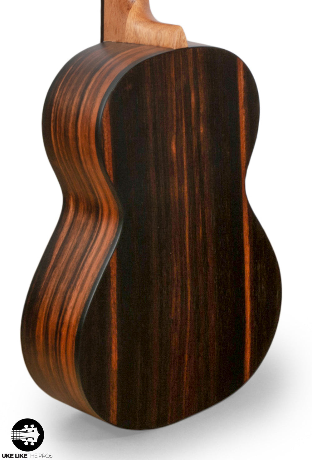 "Cordoba 21T Tenor Ukulele Solid Spruce Top and Stripped Ebony ""Kaili"""