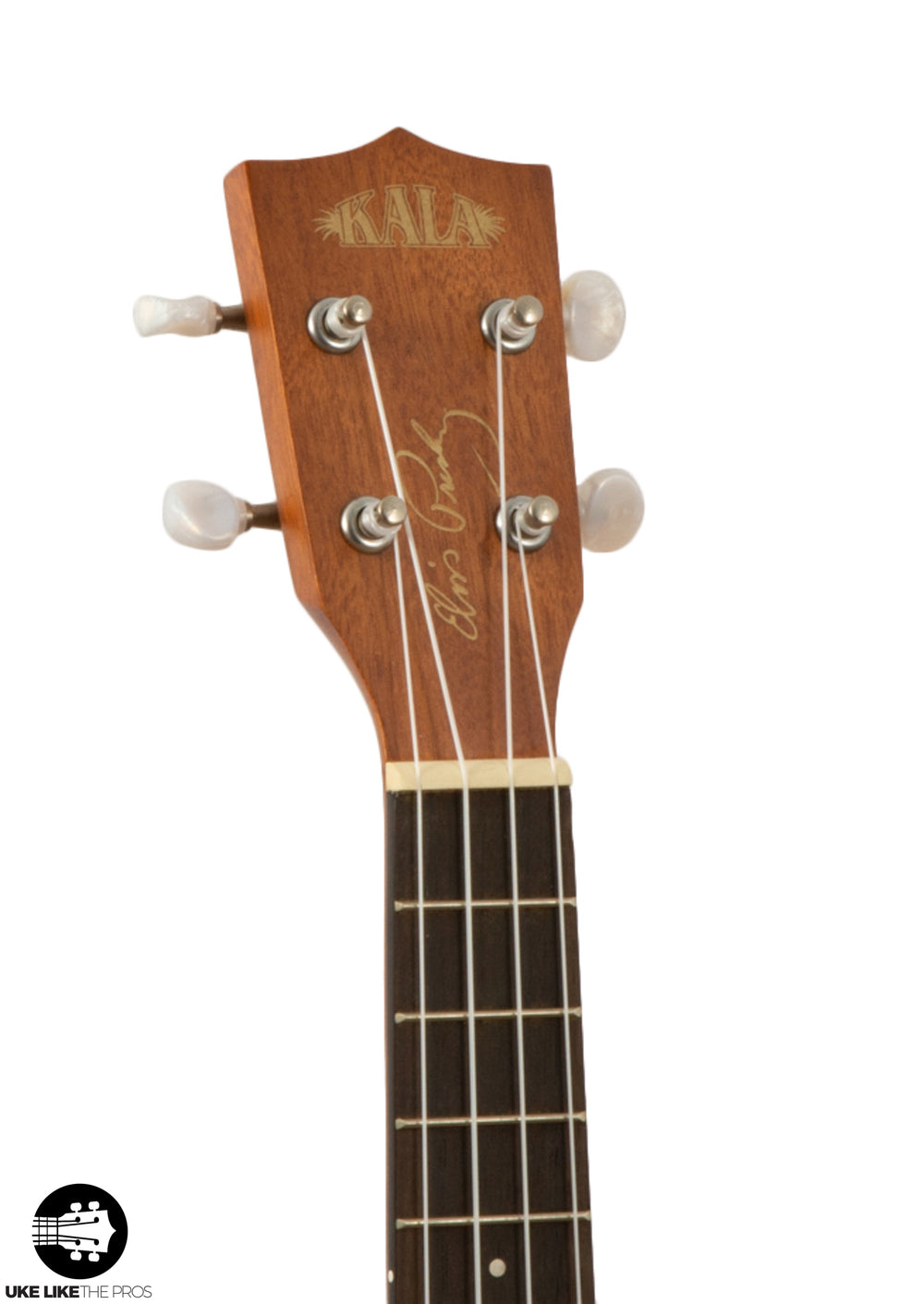 Kala Learn To Play Elvis Blue Hawaii Concert Ukulele Starter Kit KALA-LTP-C-EBH