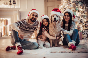 Christmas and Your Dog: Tips To Keep Your Pet Safe During The Holidays