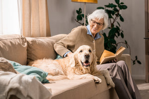 Tips on Caring for Senior Dogs