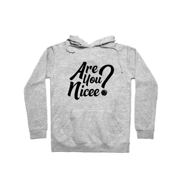 Are You Nicee? Hoodie (Black Text)