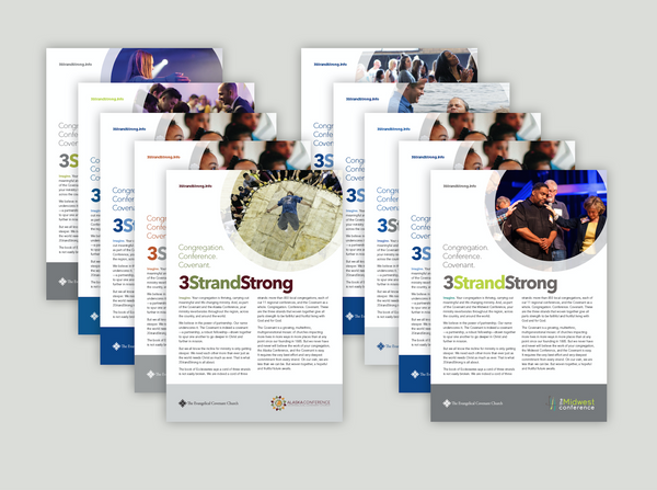 3 Strand Strong brochure 2017