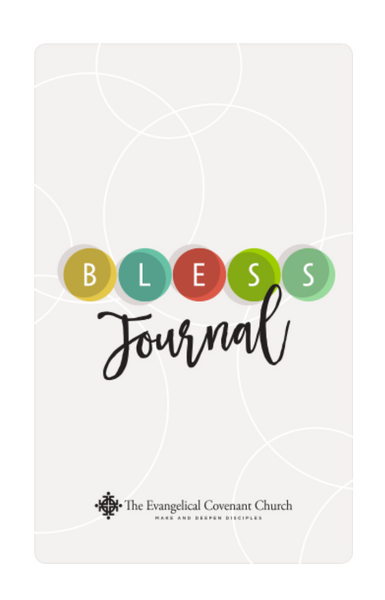 BLESS journal