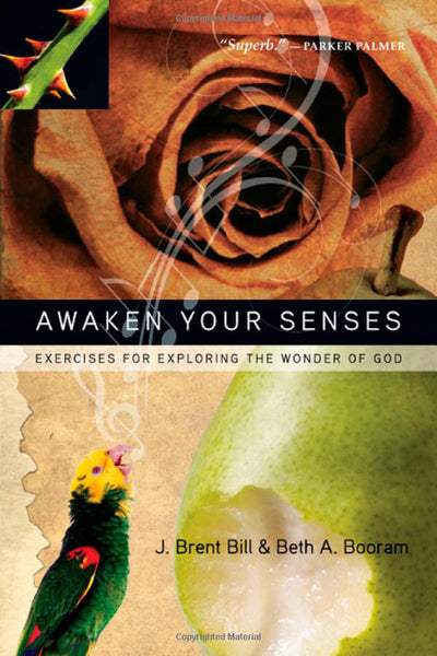Awaken Your Senses: Exercises for Exploring the Wonder of God