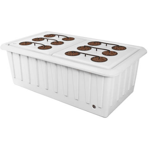 SuperPonics XL 12 Automated Feed Hydroponic Grow System