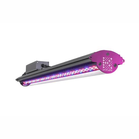 Kind X Series X40 2' LED Bar Light - Flower Spectrum-Kind LED Grow Lights-X40FLWR-westtradinghouse.com