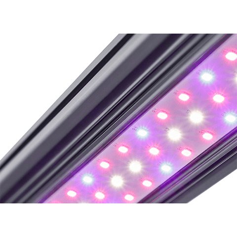 Image of Kind X Series X40 2' LED Bar Light - Flower Spectrum-Kind LED Grow Lights-X40FLWR-westtradinghouse.com