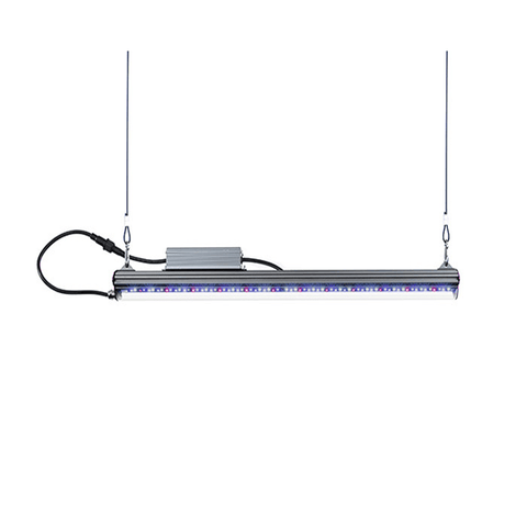 Image of Kind X Series X40 2' LED Bar Light - Vegetative Spectrum-Kind LED Grow Lights-X40VEG-westtradinghouse.com