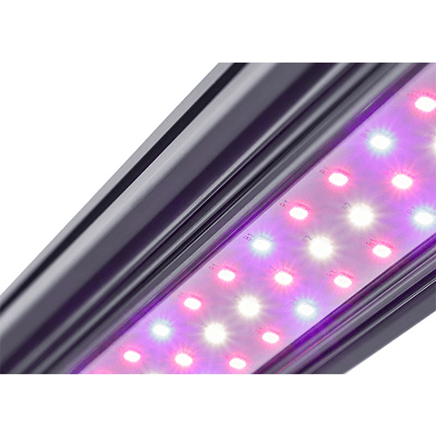 Kind X Series X80 4' LED Bar Light - Flower Spectrum-Kind LED Grow Lights-X80FLWR-westtradinghouse.com