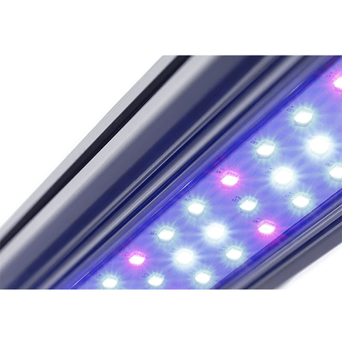 Kind X Series X80 4' LED Bar Light - Vegetative Spectrum-X80VEG-westtradinghouse.com
