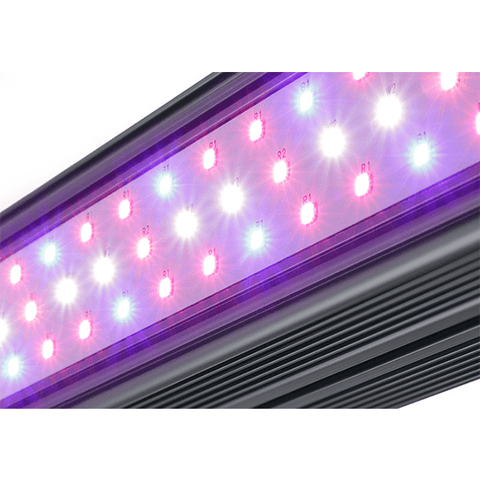 Image of Kind X Series XD75 4' LED Bar Light - Flower Spectrum-Kind LED Grow Lights-XD75FLWR-westtradinghouse.com