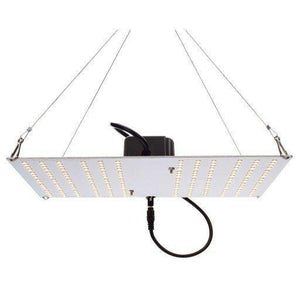 HLG 100 V2 95 Watt LED Full Spectrum Grow Light Horticulture Lighting Group-Horticulture Lighting Group-westtradinghouse.com