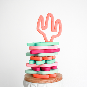 Cactus Teething Toy | Coral