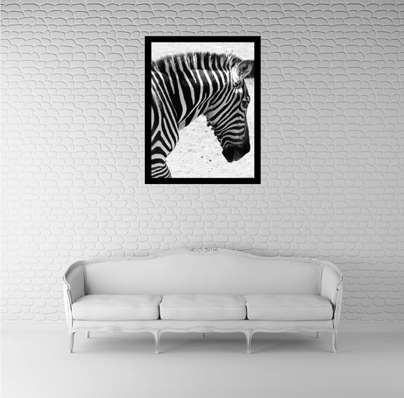 True Beauty of Zebra Wall Art
