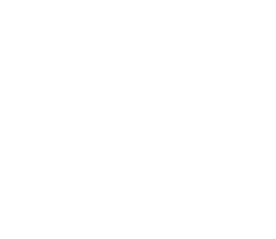 Editor's Choice - Competitor