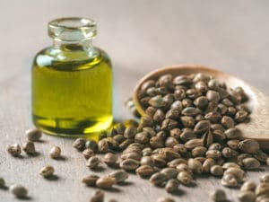 Primitive Oils | Hemp Seeds