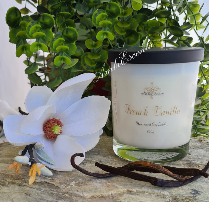 AmbiEscents French Vanilla container candle on rock with white orchid and vanilla beans and green plant on rock