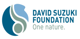 David Sukuzi Foundation