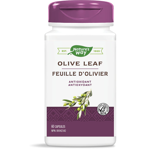 Olive Leaf, Standardized Extract / 60 capsules