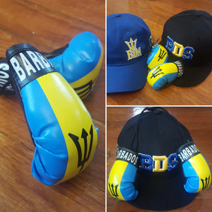 BARBADOS Mini Boxing Gloves